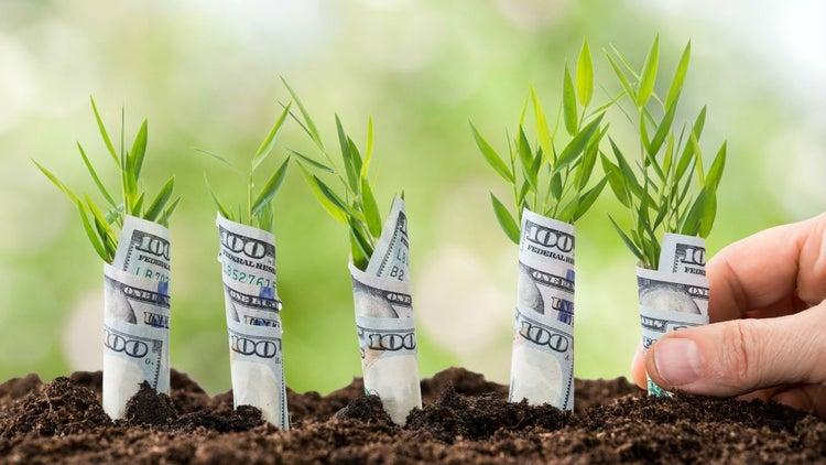 Las 5 etapas de una startup que ganará un millón de dólares