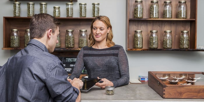 Marijuana Industry to Create 283,000 Jobs by 2020, Report Projects
