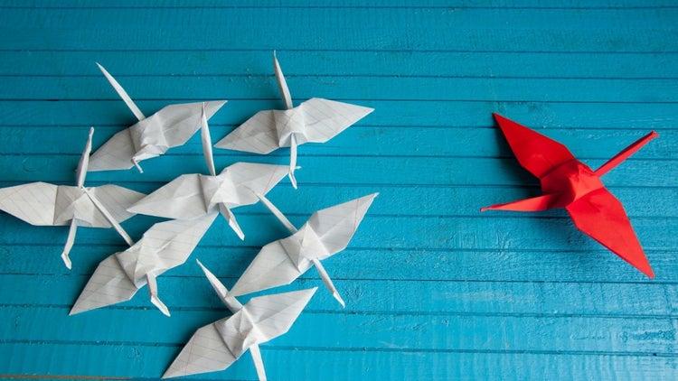 5 cosas que TODO líder debe hacer