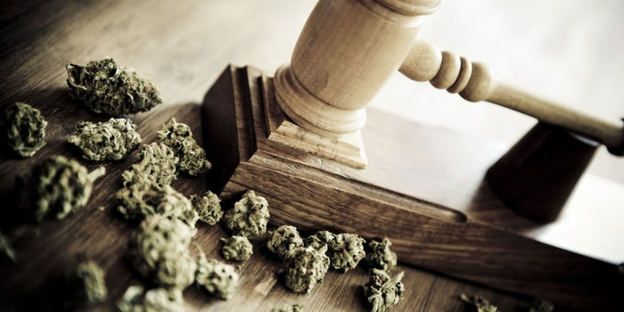 Everyone but Republicans Favors Legalizing Marijuana Nationally