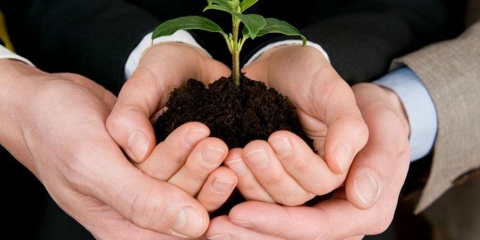 ¿Tu empresa es verde? Podrías ganar el Cleantech Challenge México