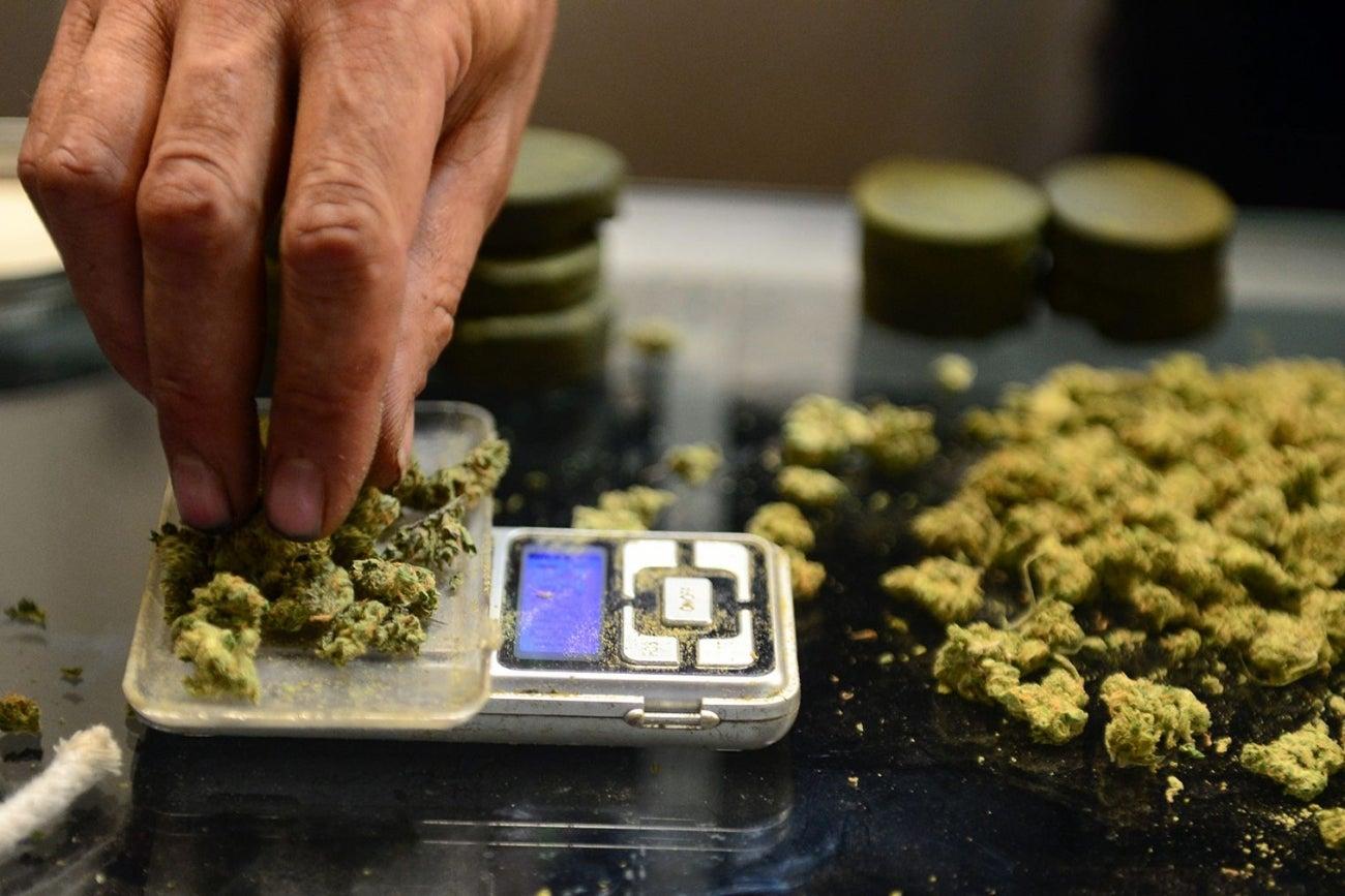 the benefit of legalizing marijuana essay