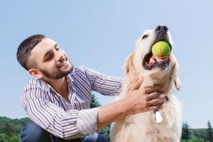 Tips de marketing del millonario negocio de las mascotas