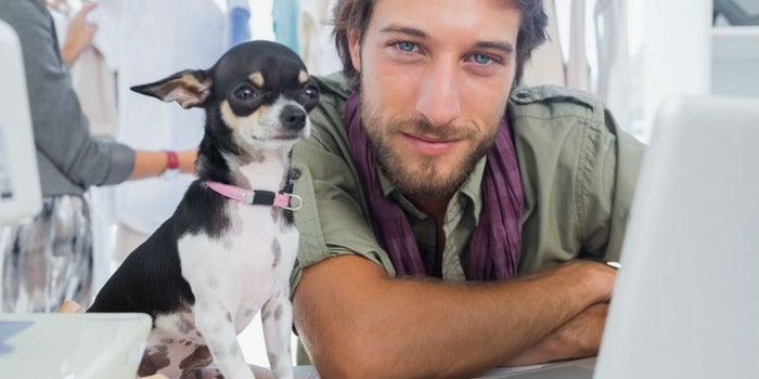 Claves para lograr que tu lugar de trabajo sea pet-friendly