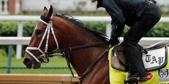 What A Kentucky Derby Darkhorse Can Teach Us About Adversity