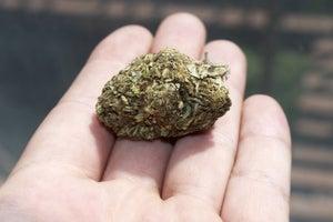 Illinois Looks to Marijuana to Plug Huge Hole it Its Budget