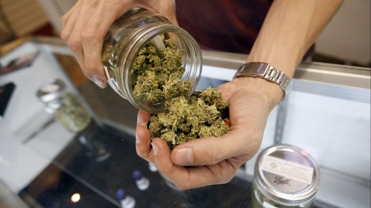 Marijuana Workers Now Outnumber Bakers and Other Common Careers