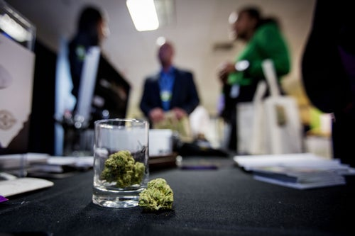 Oakland Strives to Rejuvenate Economically by Becoming California's Cannabis Capital