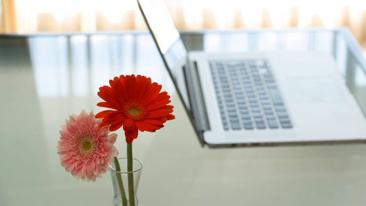 6 Science-Backed Ways to Make Your Office More Productive