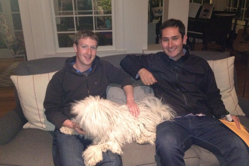 Entrepreneurs Talk About How Their Pets Make Their Lives Better