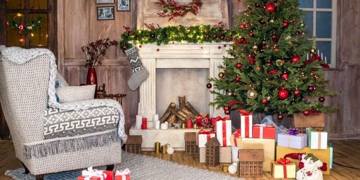 Empieza un negocio de renta de árboles de Navidad