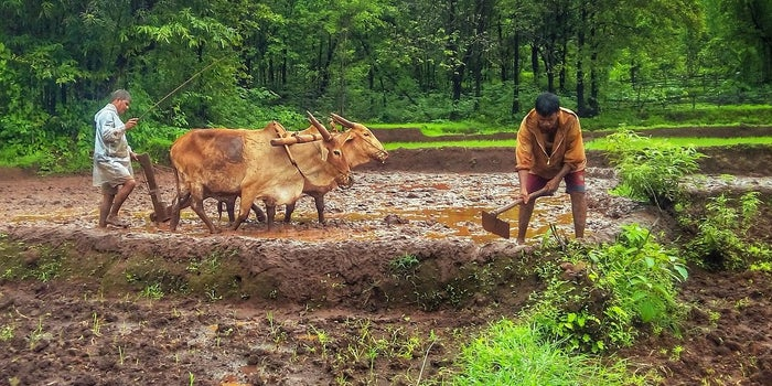 Govt Calls Upon Agri-tech startups to Build Strong Framework For Indian Agricultural Growth