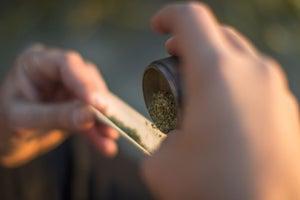 Marijuana Legalization Advocates Look to 2020 for Referendum in Florida