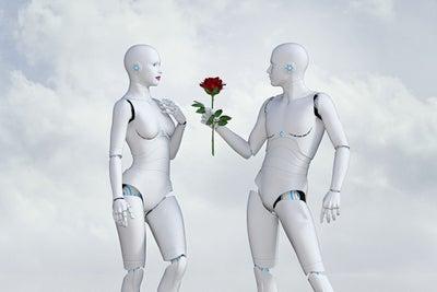 Be My Valentine: Robotics Relationships 101