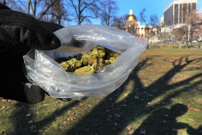 Gimme Shelter: Massachusetts Lawmakers Push to Become a Marijuana Sanc...