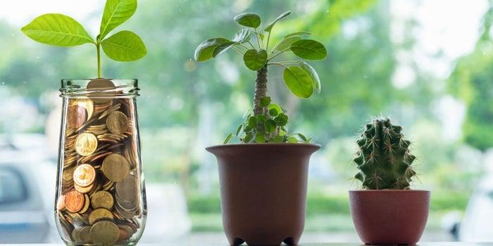 Prepara tu startup para ser aceptada por un fondo de inversión