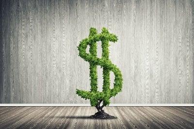Guía rápida para atraer crédito o financiamiento a tu negocio