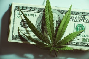 California Studies Viability of a Public Bank for Marijuana Businesses