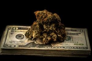 Study Warns Sky-High Marijuana Taxes Drive Consumers Back to the Black Market
