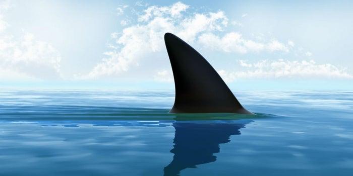 La app que transforma a tus vendedores en tiburones