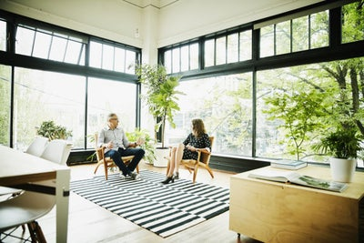 How to Add Plants to an Office to Make Employees More Focused and Prod...