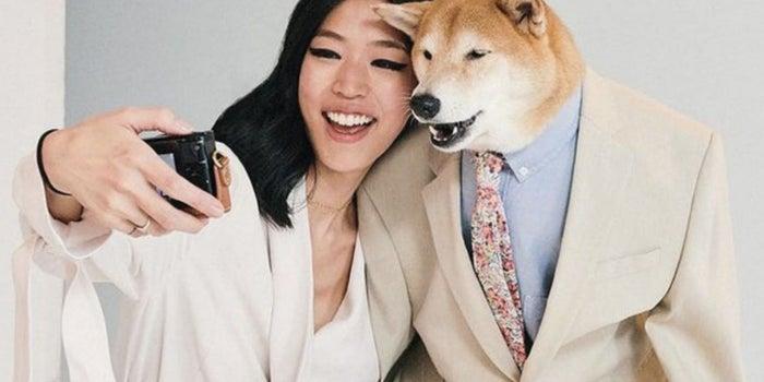 El perro instagramer que usa trajes de 138 mil pesos