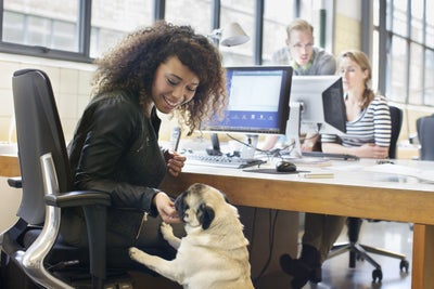 It's Bring Your Dog to Work Day! What You Need to Know to Make Your Office Pet-Friendly.