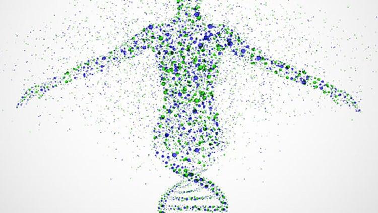 ¿Tienes el ADN emprendedor?