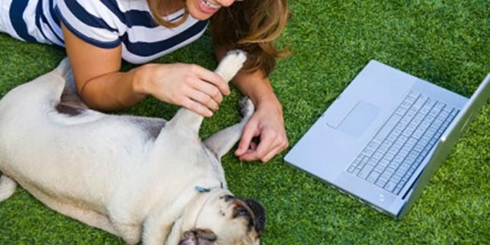 Comunidad online para mascotas