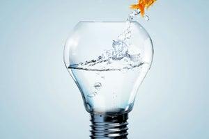 6 claves de una empresa innovadora