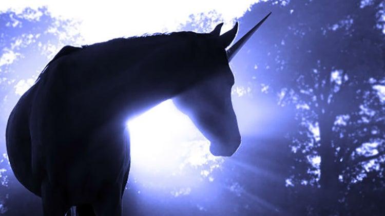 Empresas unicornio, ¿el inicio de una nueva burbuja?