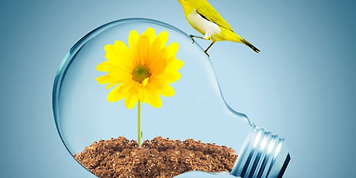 Finding Growth By Changing Your Mindset