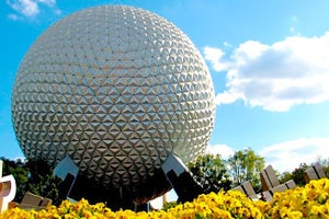 Orlando Entrepreneurs Say Magic Is Returning