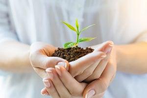 8 pasos para seguir creciendo