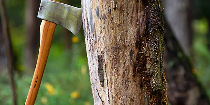 When the Axe Swings, Your Worst Employees Will Outperform