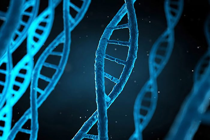 Want to Thrive Like AirBnB and Uber? Build Growth Into Your Company's DNA.