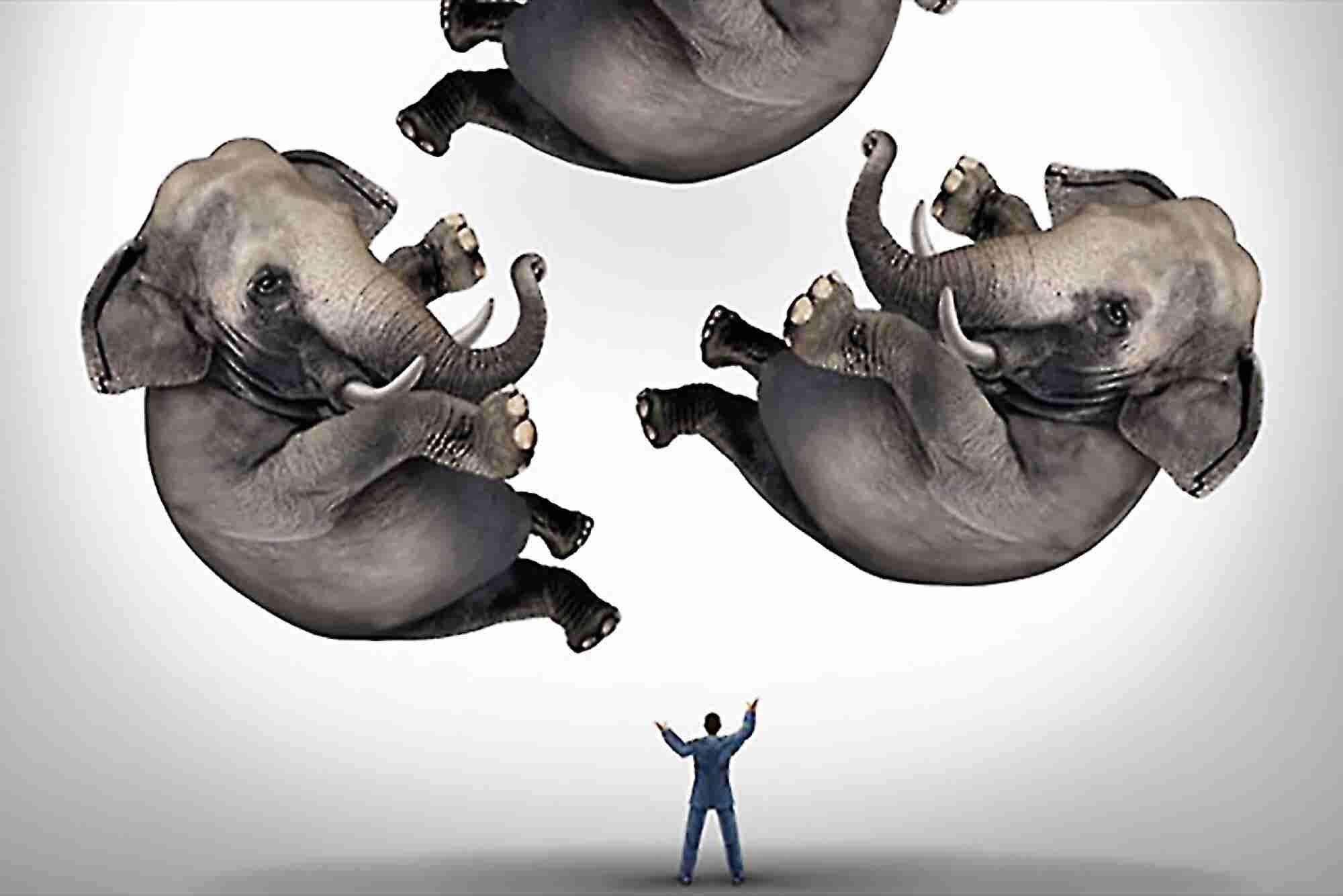 5 Skills Every Successful Entrepreneur Must Master