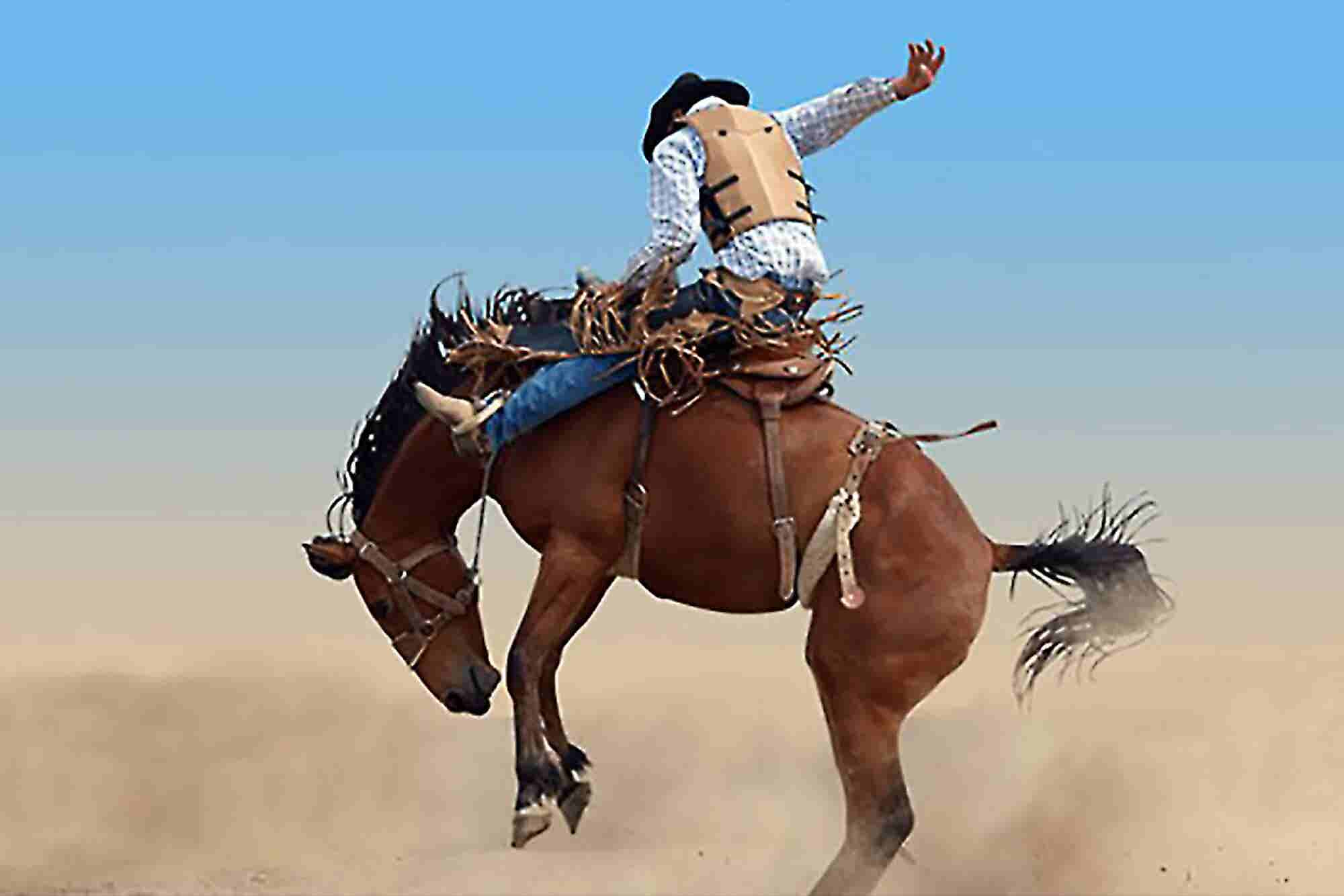 7 Truths About Risk I Learned Riding the Rodeo Circuit