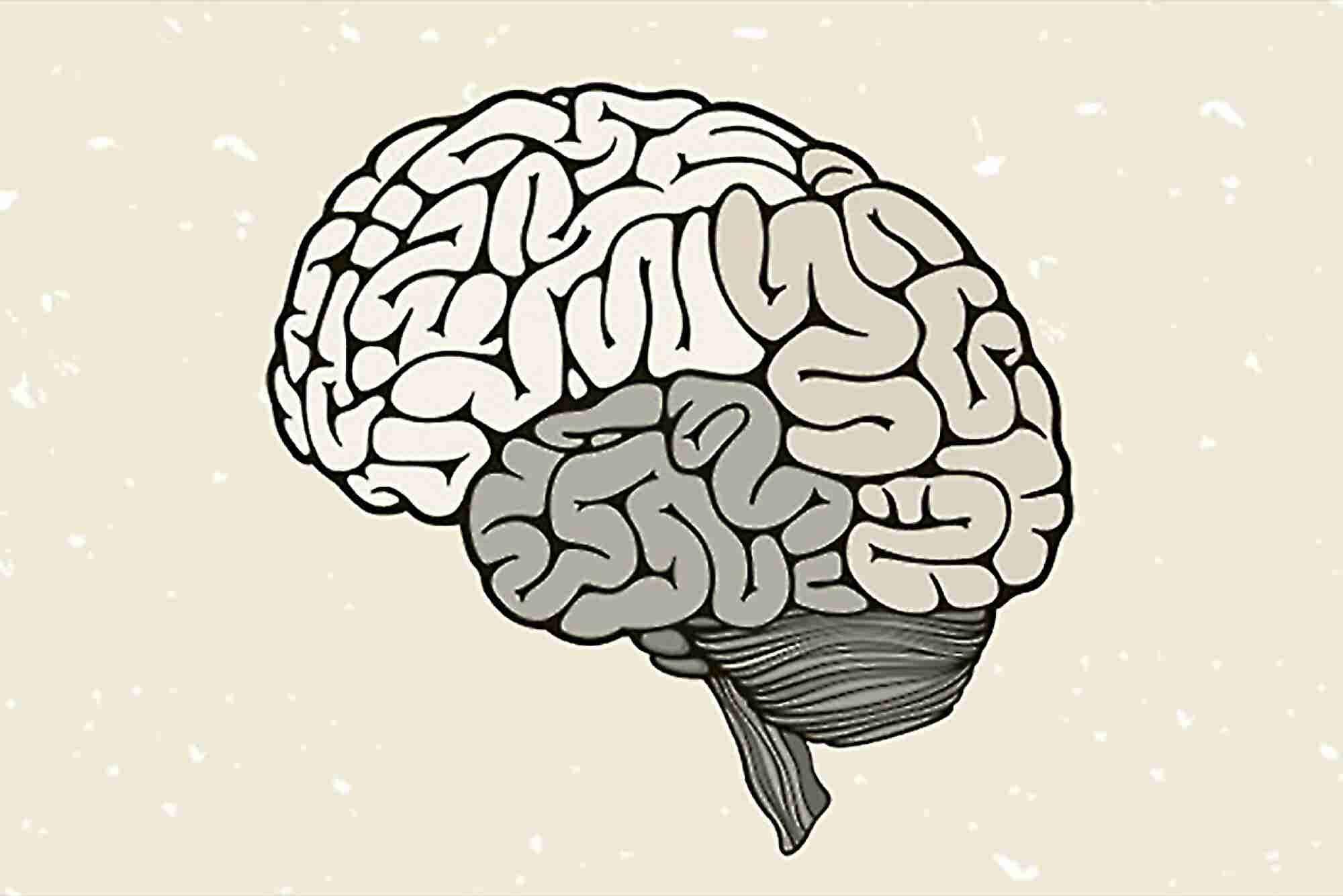 Discovering of Brain's GPS Takes Home Nobel Prize in Medicine
