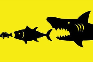 How to Keep Company Culture Alive After an Acquisition