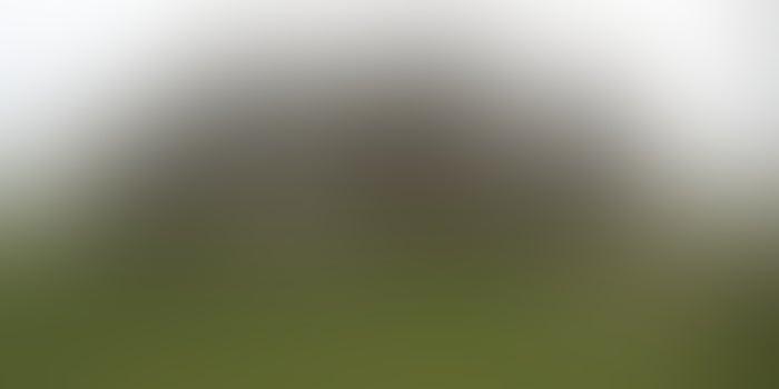 Solsticio de verano de Stonehenge: ¿Dónde y cuándo verlo?