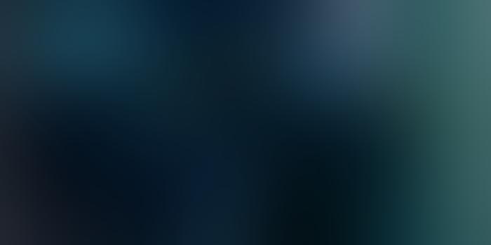 ლენი კრავიცის გადაწყვეტილებით, მსოფლიო ტური აღარ გაიმართება