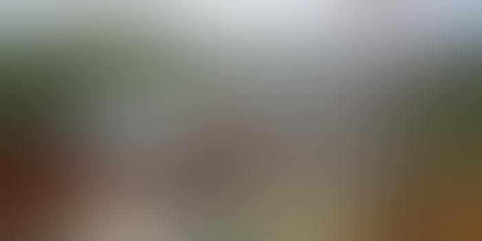 ვილა მთაში - დაისვენე ოთხივე სეზონზე