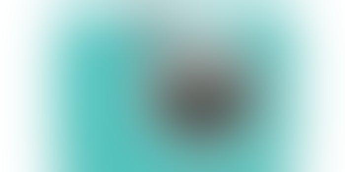Snap Attack: Canon Ivy Cliq2