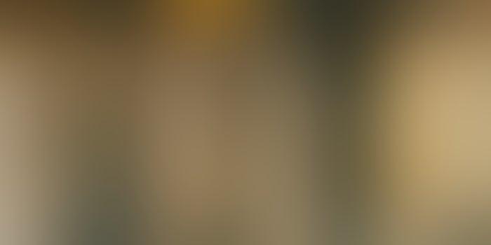 Flipkart To Invest INR 1,500 Cr In Aditya Birla Fashion And Retail