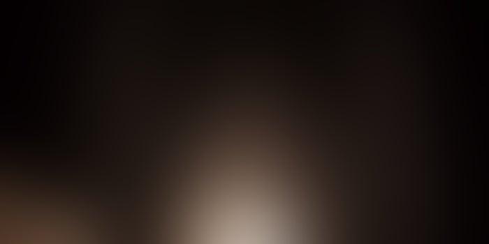 ილონ მასკი მთვარეზე პირველ ქალსა და ფერადკანიან ასტრონავტებს გააფრენს