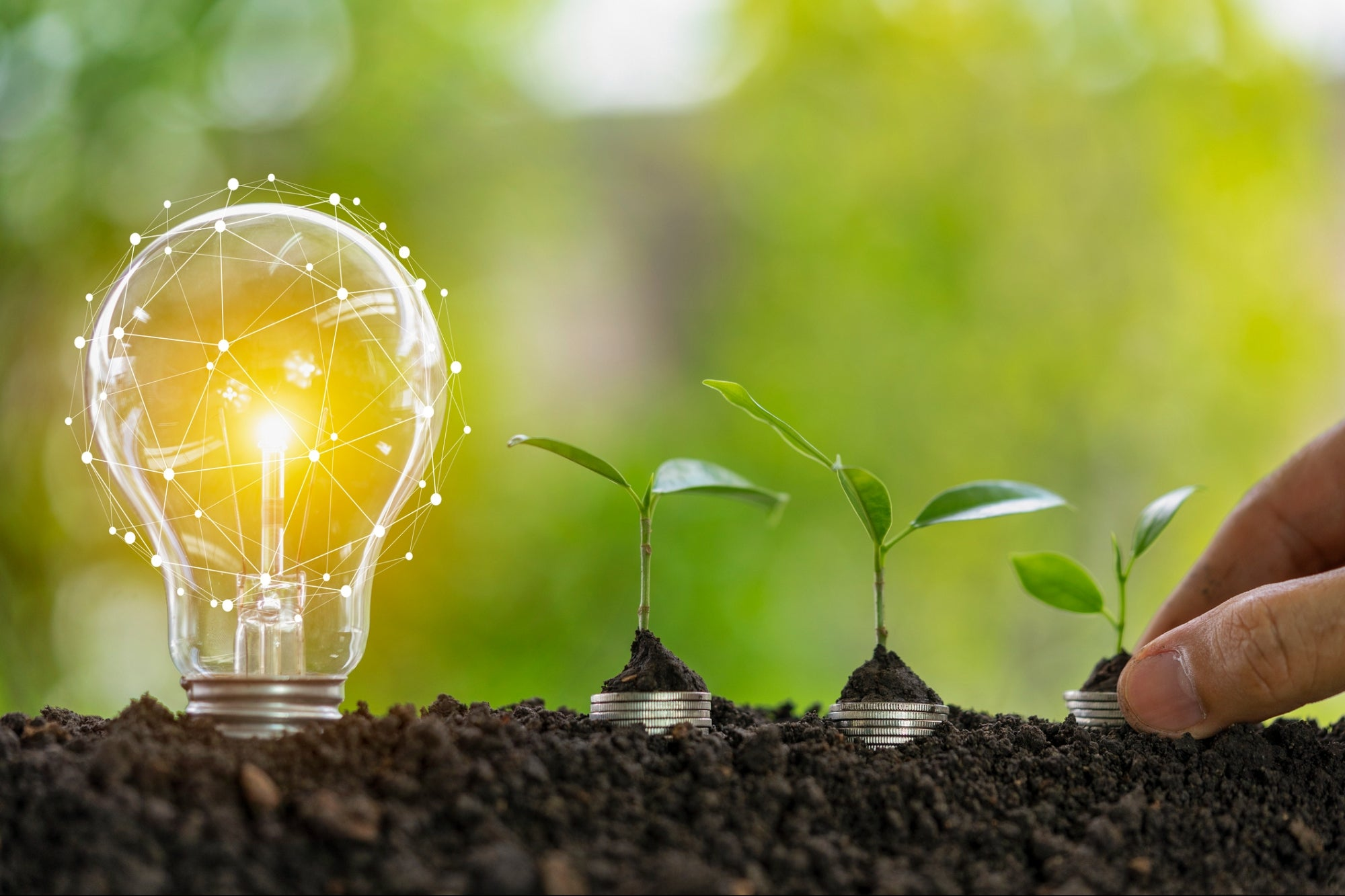 How to Get Funding for Your Eco Business