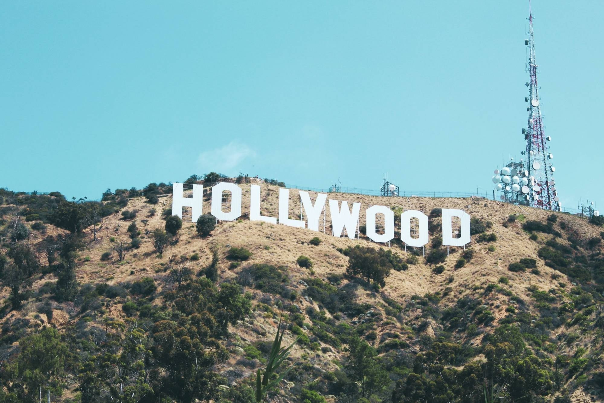 Apple wants to rent a studio in Hollywood to produce series and movies thumbnail