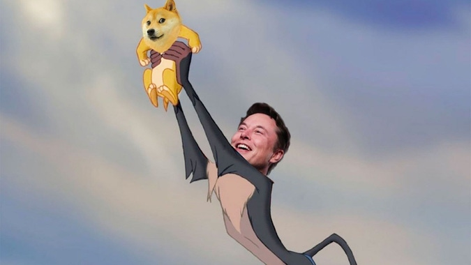 Dogecoin's Value Increased by 4,600% in 1 Year, Elon Musk ...