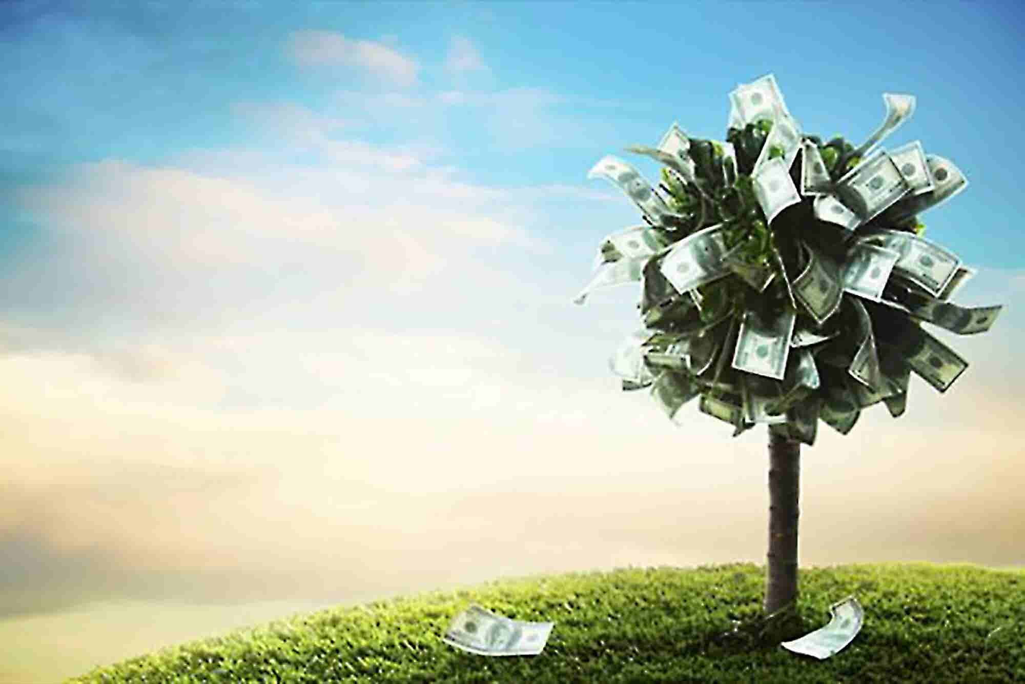 What's Behind Every Great Crowdfunding Campaign?